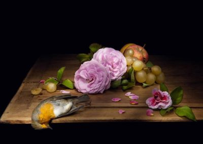 still_life_roses
